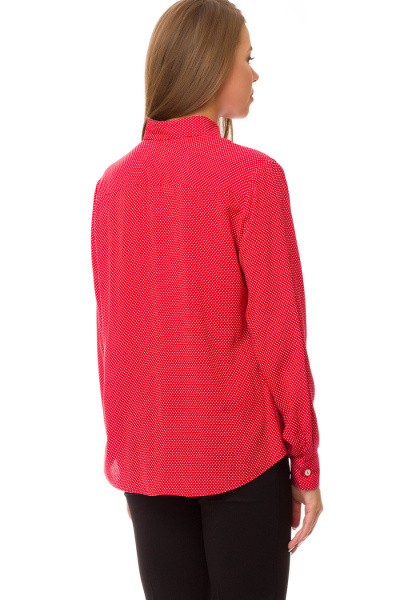 Блуза Gabriela 4420-99
